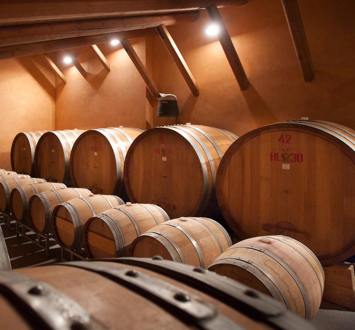 Weinproben und Kellerbesichtigungen