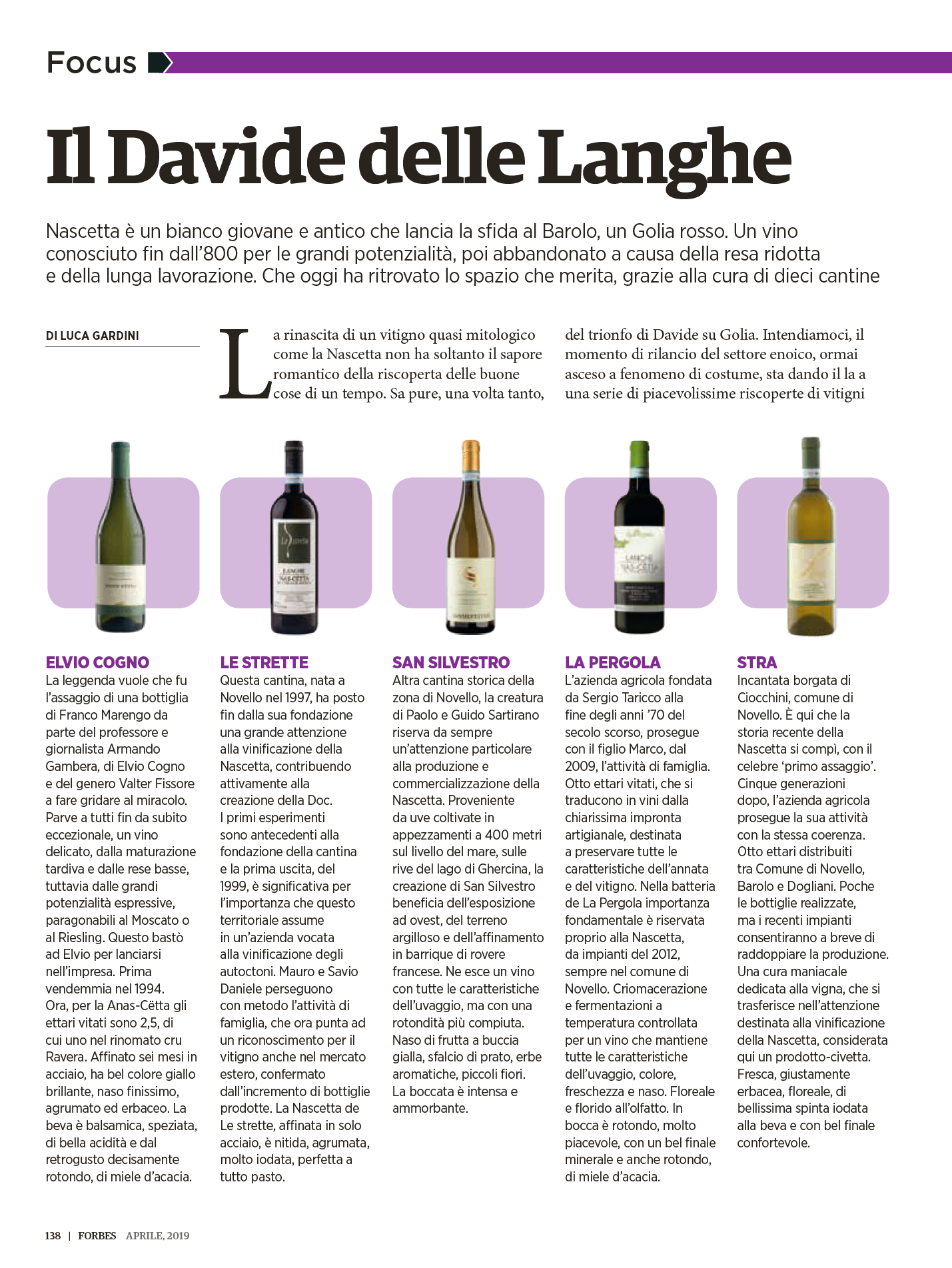 The David of the Langhe